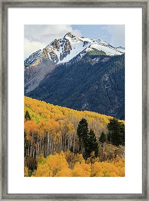 Framed Print featuring the photograph Last Light Of Autumn Vertical by David Chandler