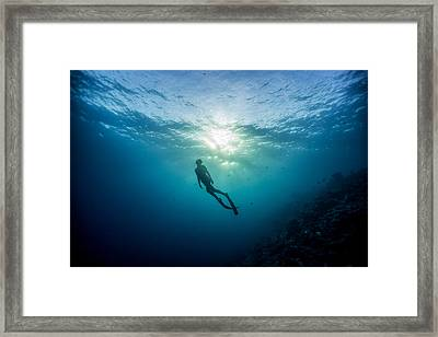 Last Light Framed Print by One ocean One breath