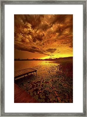 Last Light Framed Print by Phil Koch