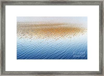 Last Light  Framed Print by Tim Gainey