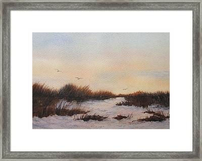 Last Light Framed Print by Vikki Bouffard