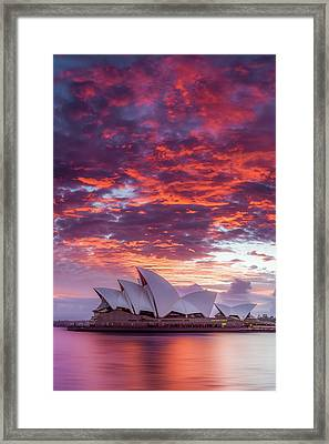 Last Moment In Sydney Framed Print by Dave Gordon