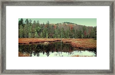 Framed Print featuring the photograph Last Of Autumn On Fly Pond by David Patterson