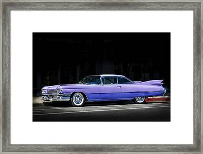 Last Of The Big Fins Framed Print