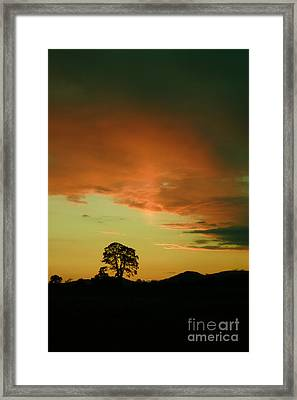 Last Rays Of Light Framed Print by Angel  Tarantella