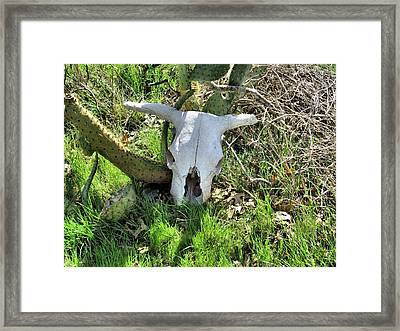 Last Roundup Framed Print by Rosalie Klidies