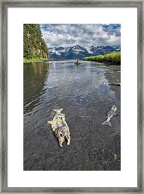 Last Run Framed Print by Ed Boudreau