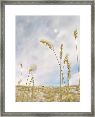 Last Snow Framed Print