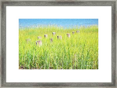 Last Summer Framed Print by Melanie Snipes