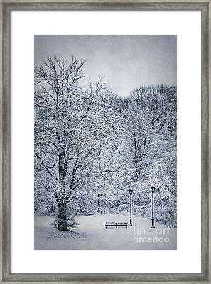 Last Winter's Dream Framed Print by Evelina Kremsdorf