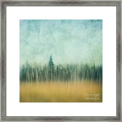 Last Year's Grass Framed Print by Priska Wettstein