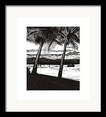 Dunk Island Drawings Framed Prints