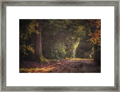 Late Afternoon Autumn Shower Framed Print by Chris Fletcher
