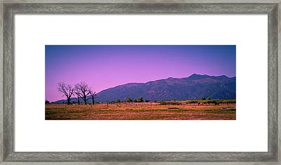 Late Afternoon In Taos Framed Print by David Patterson