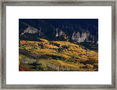 Framed Print featuring the photograph Late Afternoon Light On Aspen Groves At Silver Jack Colorado by Jetson Nguyen