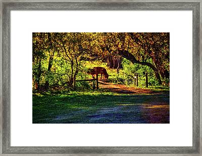 Late Afternoon On The Farm Framed Print by Roger Passman