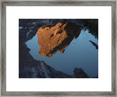 Late Afternoon Sun Framed Print