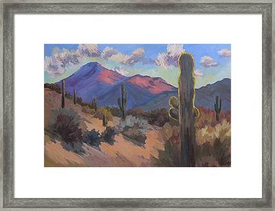 Late Afternoon Tucson 2 Framed Print by Diane McClary