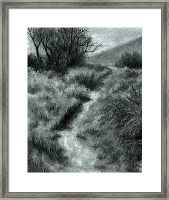 Late Afternoon Walk Framed Print by David King