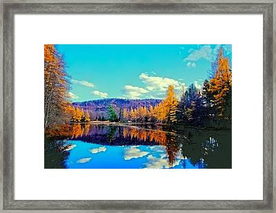 Late Autumn At Woodcraft Camp Framed Print by David Patterson