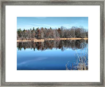 Late Autumn Reflections Framed Print