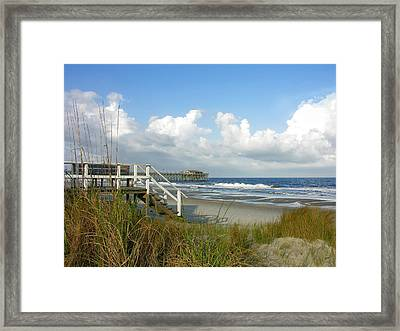 Late Day Sun  Framed Print by Thomas Lovelace