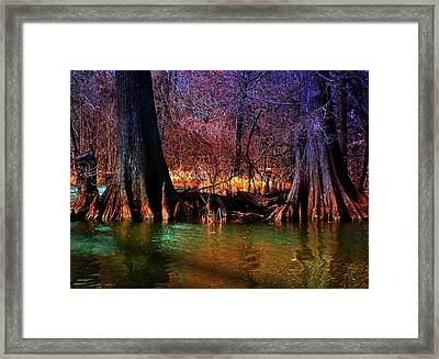 Late Evening In Reelfoot Framed Print by Julie Dant