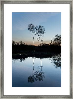 Late Evening Reflections II Framed Print