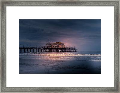Late Evening Swim Framed Print