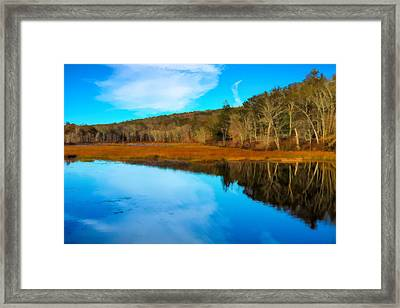 Late Fall At A Connecticut Marsh. Framed Print
