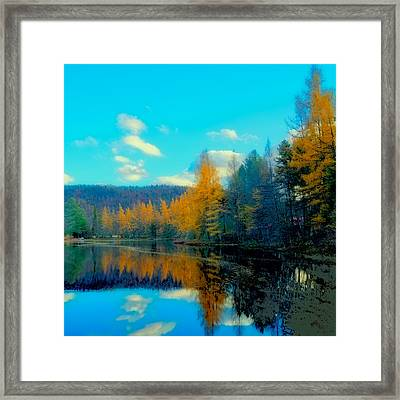 Late Fall At Woodcraft Camp Framed Print by David Patterson