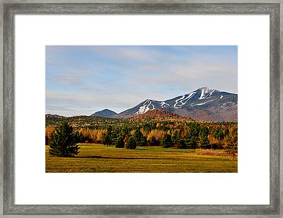 Late Fall Early Winter Framed Print