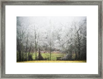 Late Fall Ice Storm Central Ma 2008 Framed Print by Richard Danek