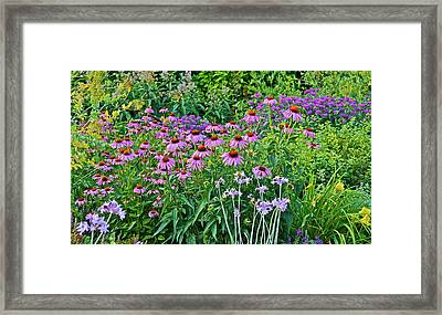Late July Garden 2 Framed Print by Janis Nussbaum Senungetuk