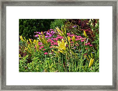 Late July Garden 1 Framed Print by Janis Nussbaum Senungetuk