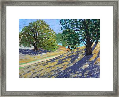 Framed Print featuring the painting Late Light's Shadows by Gary Coleman