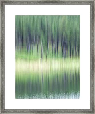 Late Spring Light Framed Print