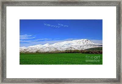 Late Spring View Framed Print by Robert Bales