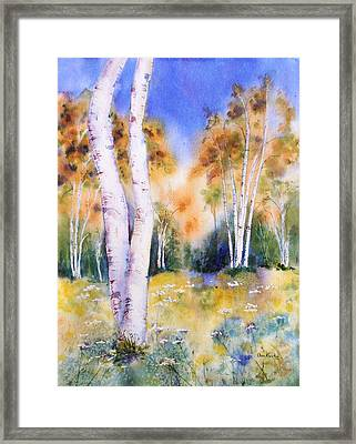 Late Summer Birches Framed Print