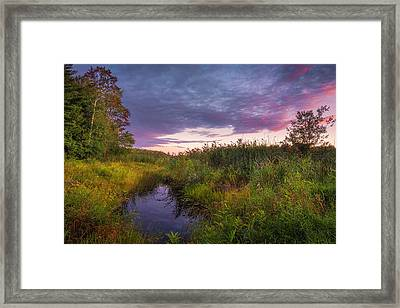 Late Summer Color At Blue Marsh Framed Print