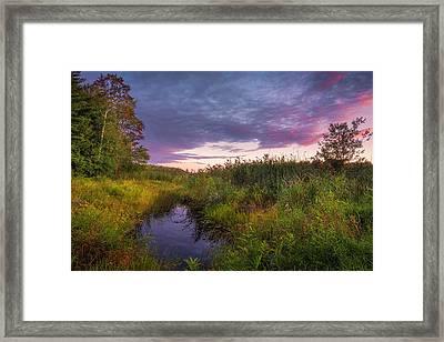Late Summer Color At Blue Marsh Framed Print