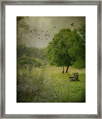 Late Summer Daydream By The Old Tree Framed Print by Gothicrow Images