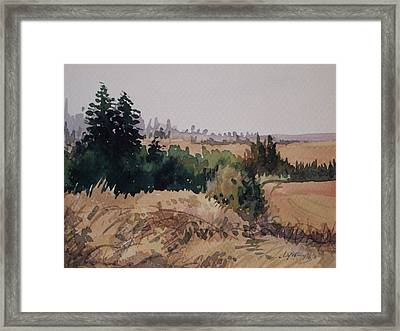 Late Summer Fields Cheney Wa Framed Print