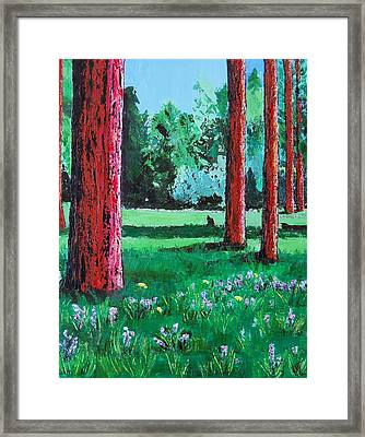 Late Summer Get Away Framed Print