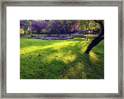 Late Summer Light Framed Print