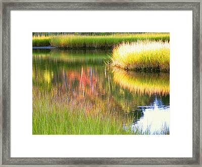 Stillness Of Late Summer Marsh  Framed Print