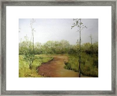 Late Summer Walk Framed Print by Roseann Gilmore