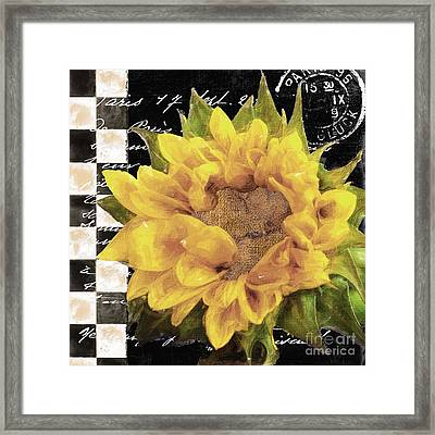 Late Summer Yellow Sunflowers II Framed Print by Mindy Sommers