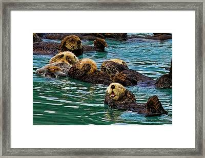 Laugh It Up Framed Print by David Wagner