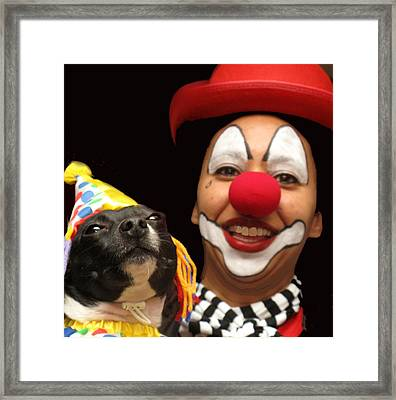 Laugh Out Loud Framed Print by Ian  MacDonald